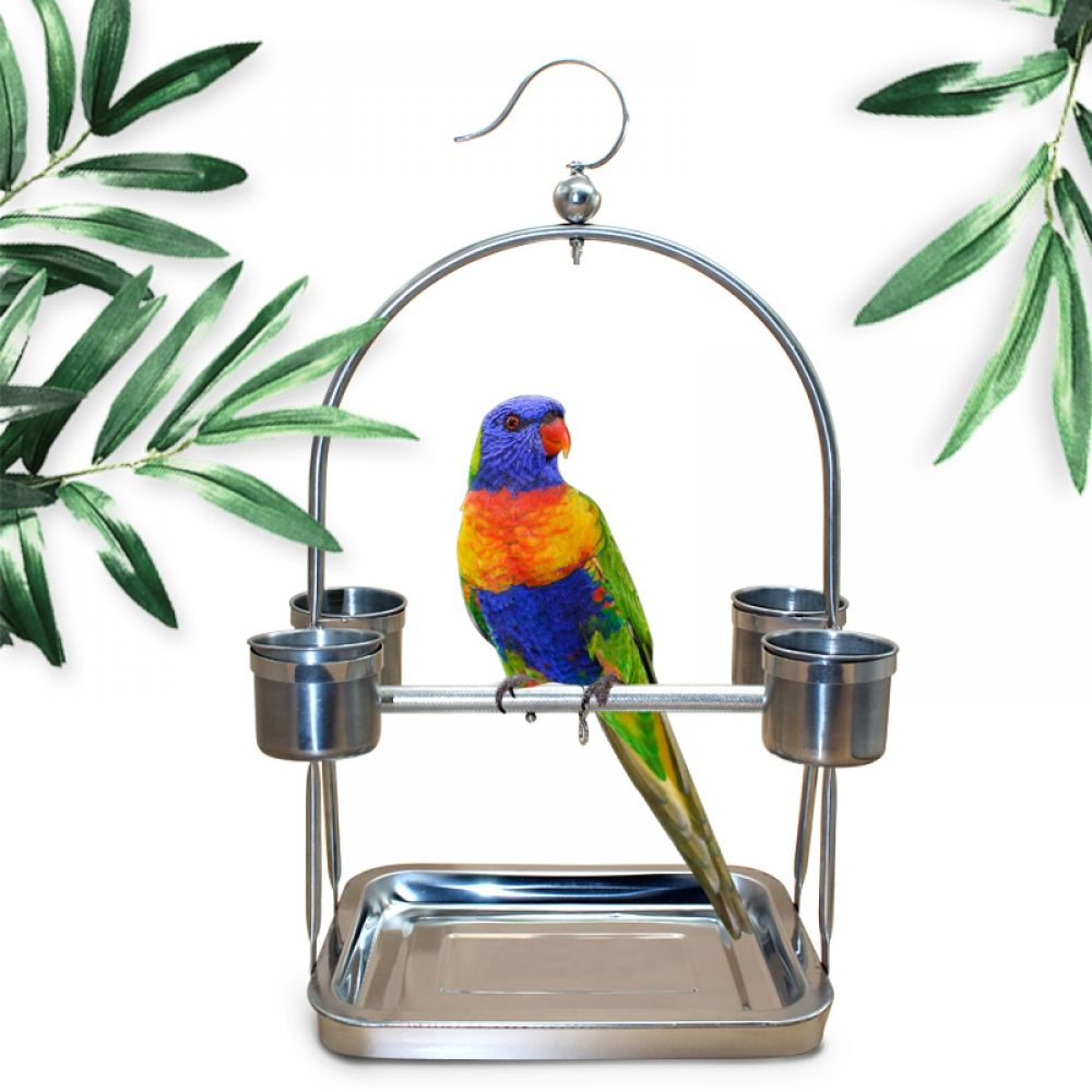 Accessories for Birds